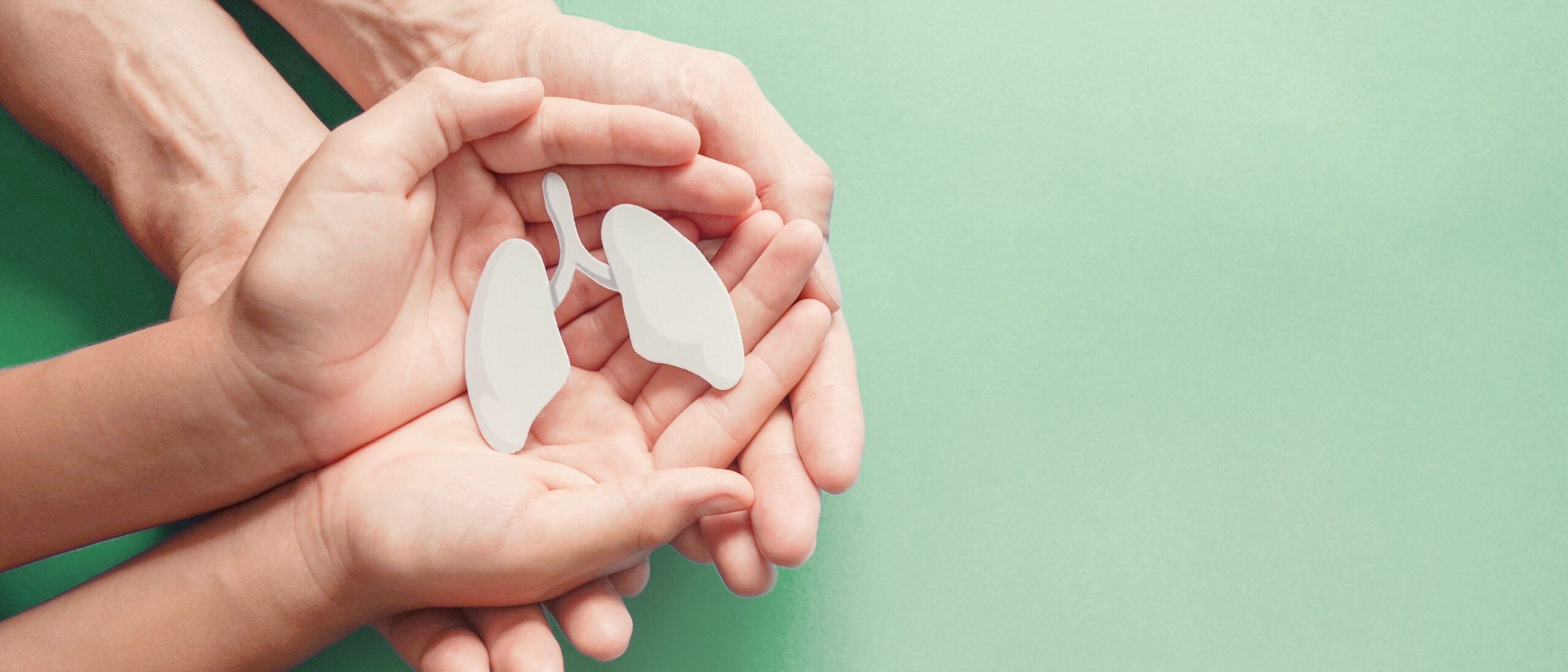 Adult and child hands holding a small replica of lungs to represent Chronic Lung Disease